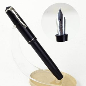 golden platignum fountain pen