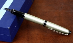 waterman-expert-city-line-urban-metal-fountain-pen-Steel-M-nib-original-box